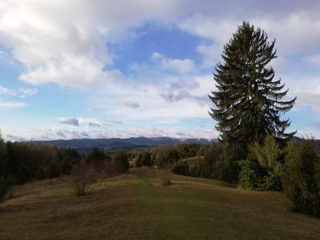Nízke Tatry, trail to Špania Dolina (view towards the Great Fatra)