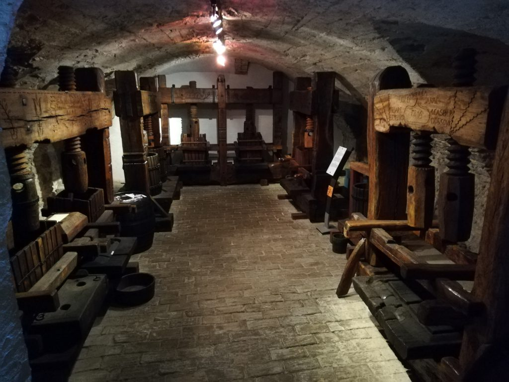 Wine cellar in the Small Carpathian Museum