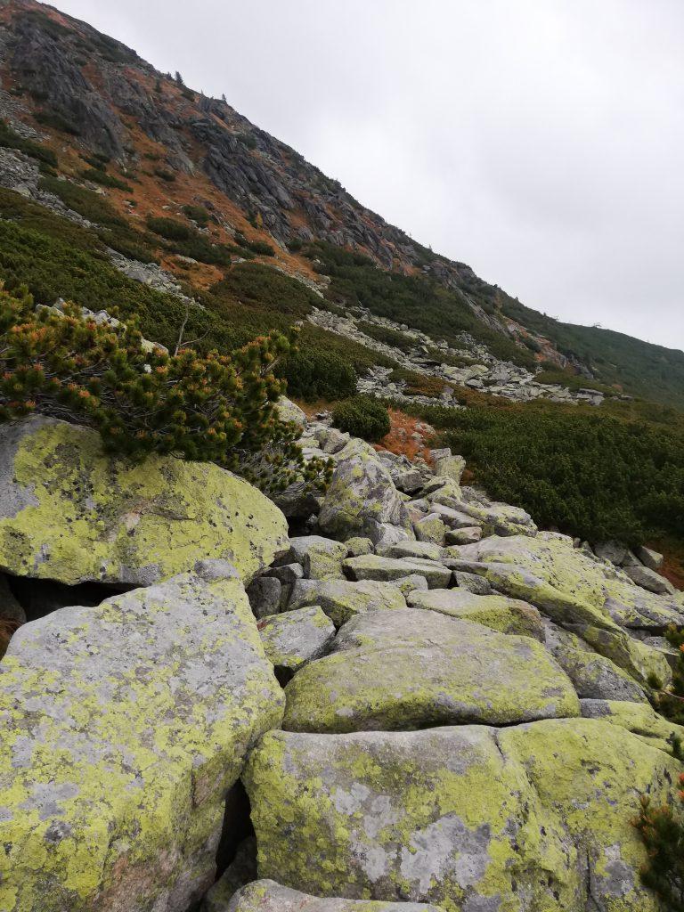 Furkotská dolina, near Chata pod Solisko on my way to Predné Solisko