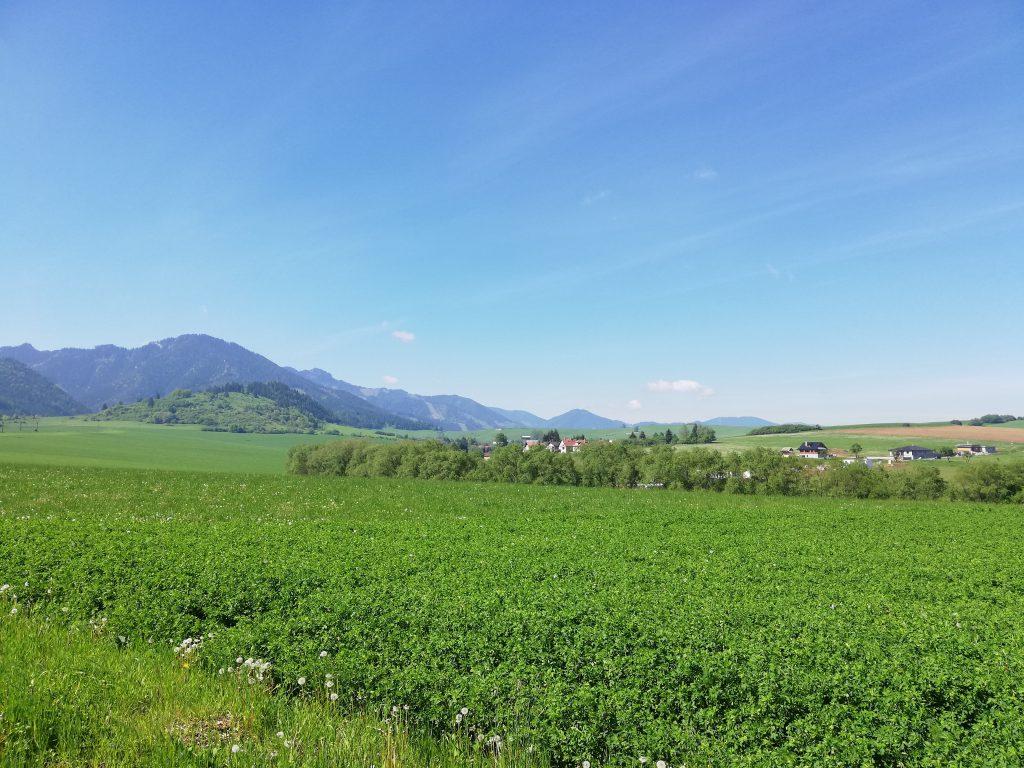 Near Liptovský Mikuláš (Iľanovo), view northwards onto the High Tatras