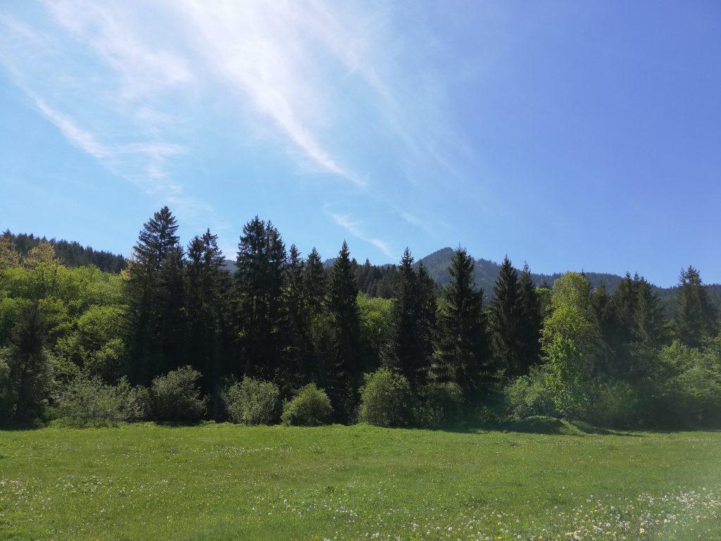 Near Liptovský Mikuláš (Iľanovo), view southwards onto the Low Tatras