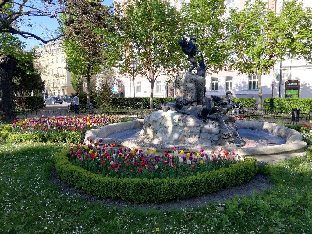 Tulips and a fountain near Šafárikovo námestie