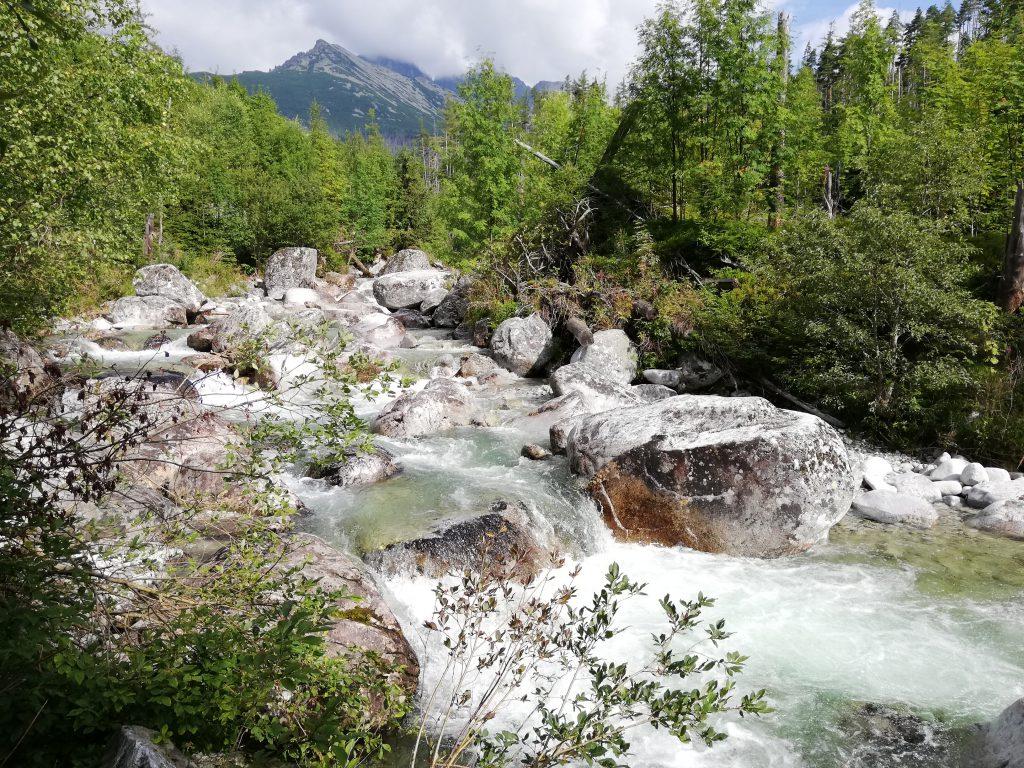 Near Tatranská Lesná, stream Studený potok
