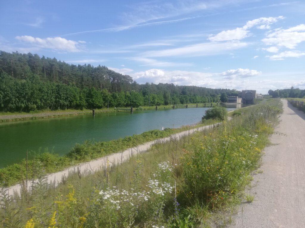 Lock near Erlangen (2), bank vegetation in midsummer
